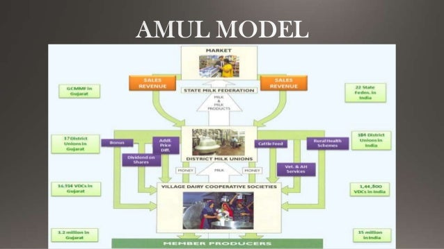 """amul technology Amul is launching innovative programmes like the """"cow to consumer"""" to make the dairy sector """"contemporarily cool"""" and commercially viable for today's youth who are one of the main reasons for introducing such schemes was to make the dairy industry attractive for the tech-savvy youth, he added."""