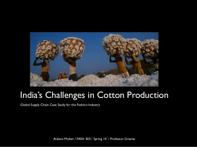 India's Challenges in Cotton Production Global Supply Chain Case Study for the Fashion Industry Aidenn Mullen / FASH 503 /...