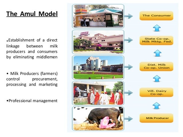 management control system of amul 5 amul's supply chain management 6 amul supply chain management practices amul is a dairy cooperative in the western india that has been primarily responsible, through its innovative practices, for india to become the world's largest milk producer.