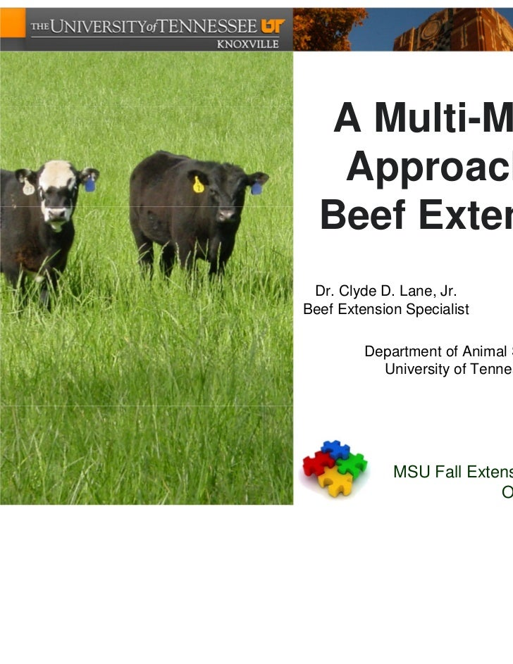 A Multi-Media   Approach to  Beef Extension Dr. Clyde D. Lane, Jr.        Emily L. TiptonBeef Extension Specialist       I...