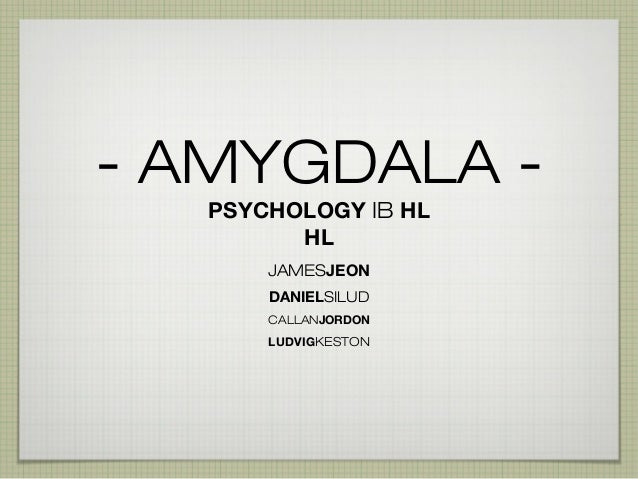- AMYGDALA PSYCHOLOGY IB HL HL JAMESJEON DANIELSILUD CALLANJORDON  LUDVIGKESTON