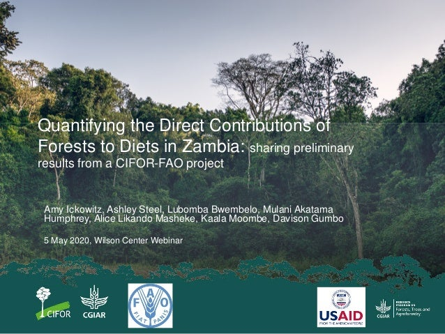 Quantifying the Direct Contributions of Forests to Diets in Zambia: sharing preliminary results from a CIFOR-FAO project A...