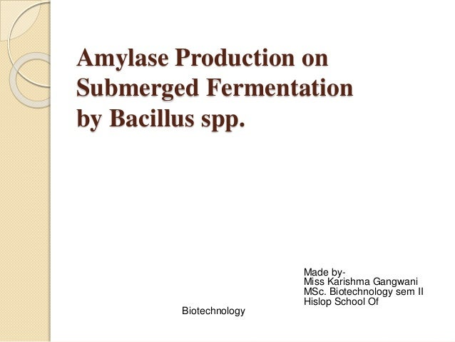 Amylase Production on  Submerged Fermentation  by Bacillus spp.  Made by-  Miss Karishma Gangwani  MSc. Biotechnology sem ...