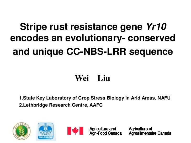 Stripe rust resistance gene Yr10encodes an evolutionary- conserved and unique CC-NBS-LRR sequence                        W...