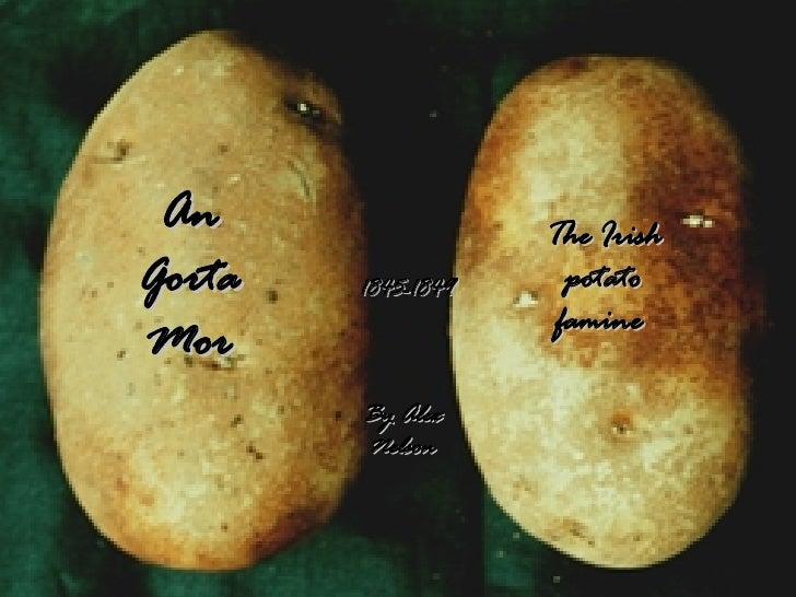 An Gorta Mor The Irish potato famine  1845-1849 By Alex Nelson