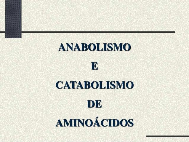 ANABOLISMO     ECATABOLISMO    DEAMINOÁCIDOS