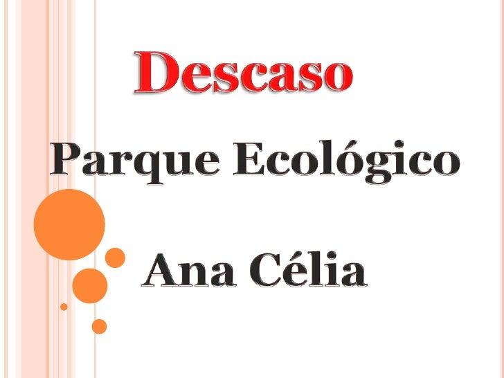 Abandono do Parque Ecológico no Ana Célia