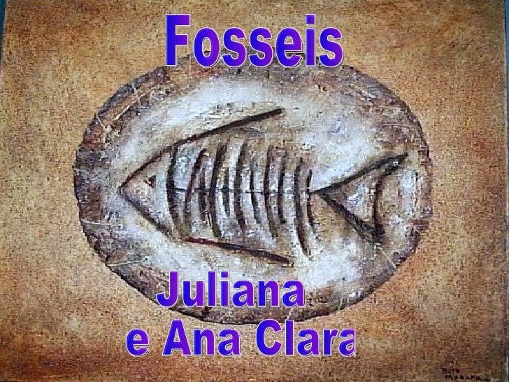 • Fosseis são restos ou vestígios de  animais e vegetais preservados em  rochas.Restos são partes do animal ou  planta e v...