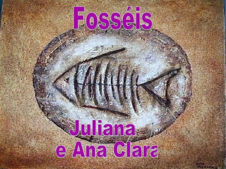 • Fosséis são restos ou vestígios de  animais e vegetais preservados em  rochas.Restos são partes do animal ou  planta e v...