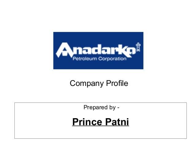 Company Profile Prepared by - Prince Patni