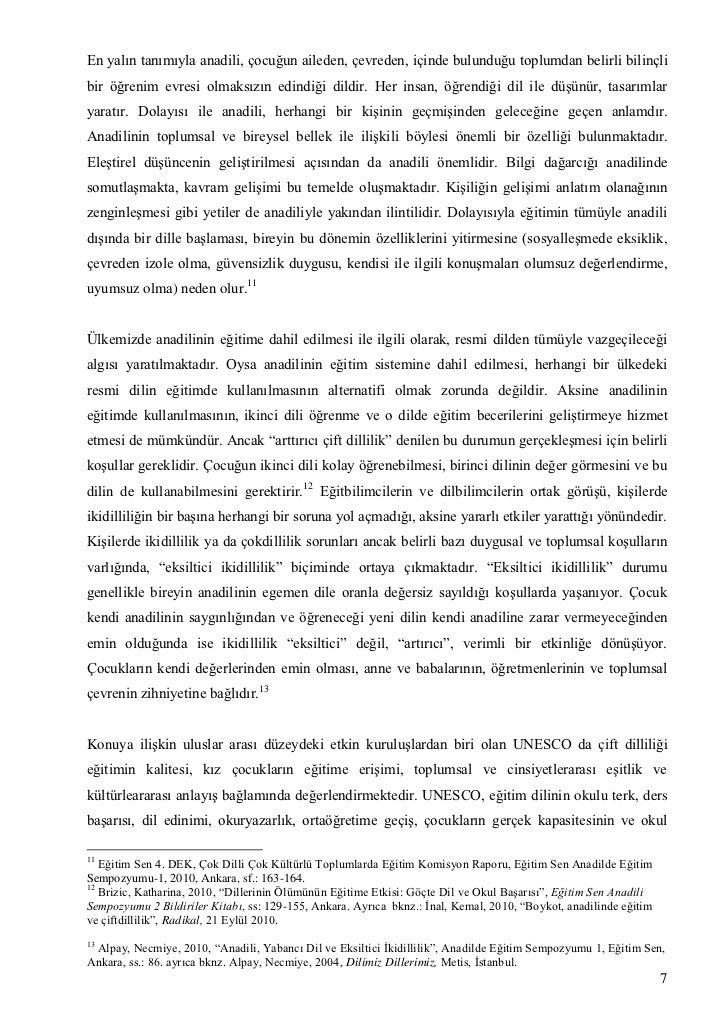 Rapor pdf