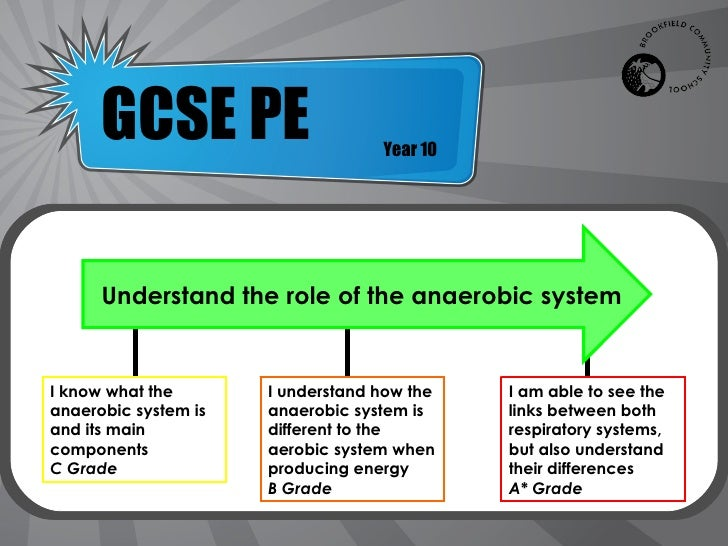 Anaerobic respiration system solo gcse ccuart Gallery
