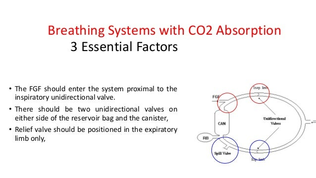 Breathing Systems with CO2 Absorption • The FGF should enter the system proximal to the inspiratory unidirectional valve. ...