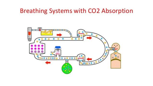 Breathing Systems with CO2 Absorption