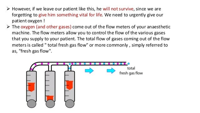  However, if we leave our patient like this, he will not survive, since we are forgetting to give him something vital for...