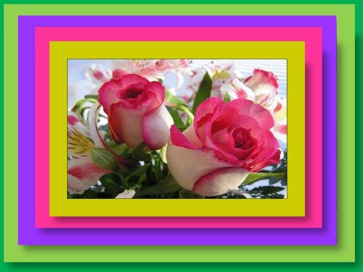 Querida amiga, a vida é um presente de DEUS e cada aniversário é um novo              começo.