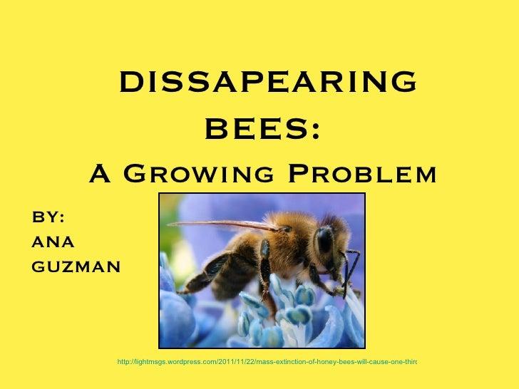 DISSAPEARING         BEES:   A Growing ProblemBY:ANAGUZMAN     http://lightmsgs.wordpress.com/2011/11/22/mass-extinction-o...