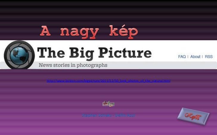 http://www.boston.com/bigpicture/2011/12/50_best_photos_of_the_natural.html Stephen Schlaks - Delfin Azul