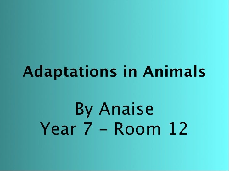 Adaptations in Animals        By Anaise   Year 7 - Room 12