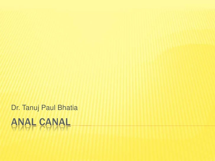 Anal canal <br />Dr. Tanuj Paul Bhatia<br />