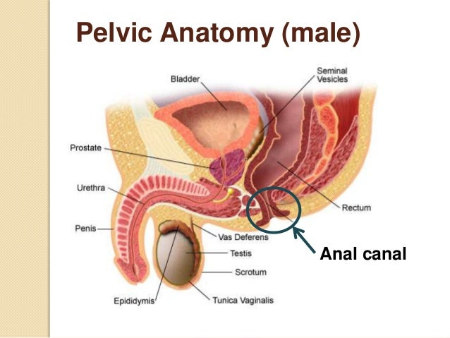 Anal cancer men