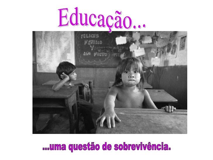 Educação... ...uma questão de sobrevivência.