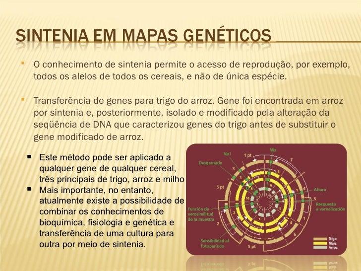    Prec isamos ter uma sequencia de cDNA mas    precisamos ter também a seqüência de nucleotídeos    que se encontra 5 ou...