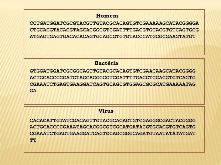 Marcadores moleculares          baseados em DNA/RNA     RFLP                               MARCADORES BASEADOS           ...