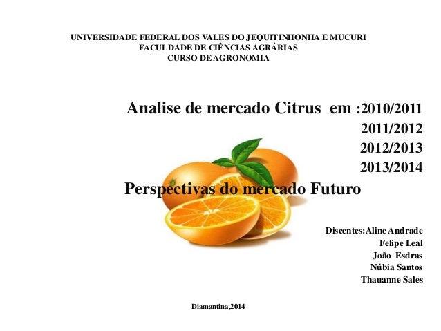 UNIVERSIDADE FEDERAL DOS VALES DO JEQUITINHONHA E MUCURI FACULDADE DE CIÊNCIAS AGRÁRIAS CURSO DE AGRONOMIA Analise de merc...