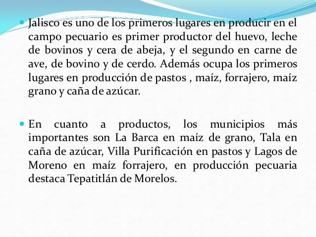  Jalisco es uno de los primeros lugares en producir en el campo pecuario es primer productor del huevo, leche de bovinos ...