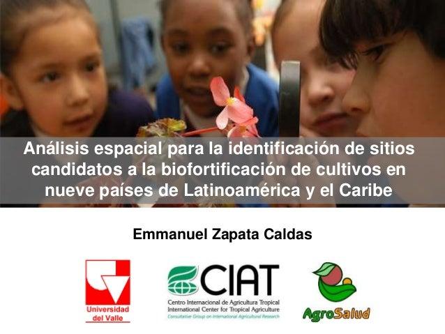 Emmanuel Zapata Caldas Análisis espacial para la identificación de sitios candidatos a la biofortificación de cultivos en ...