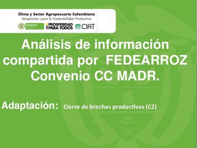 Análisis de información compartida por FEDEARROZ Convenio CC MADR. Adaptación: Cierre de brechas productivas (C2)