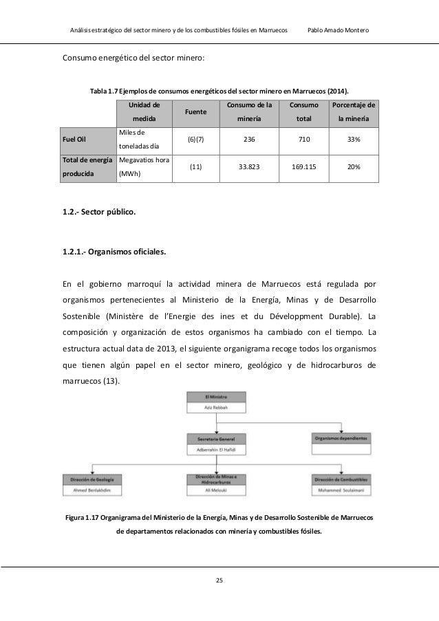 Análisis estratégico del sector minero y de los combustibles fósiles en Marruecos Pablo Amado Montero 27 Figura 1.19 Organ...