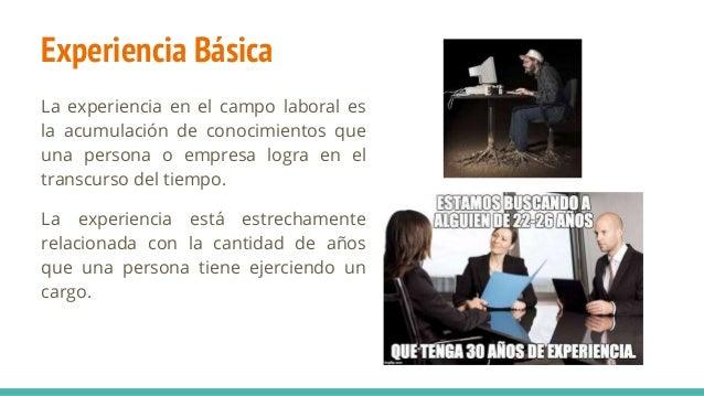 Experiencia Básica La experiencia en el campo laboral es la acumulación de conocimientos que una persona o empresa logra e...