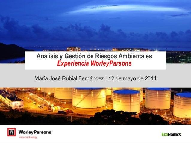 María José Rubial Fernández   12 de mayo de 2014 Análisis y Gestión de Riesgos Ambientales Experiencia WorleyParsons