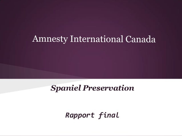 Spaniel Preservation  Rapport final