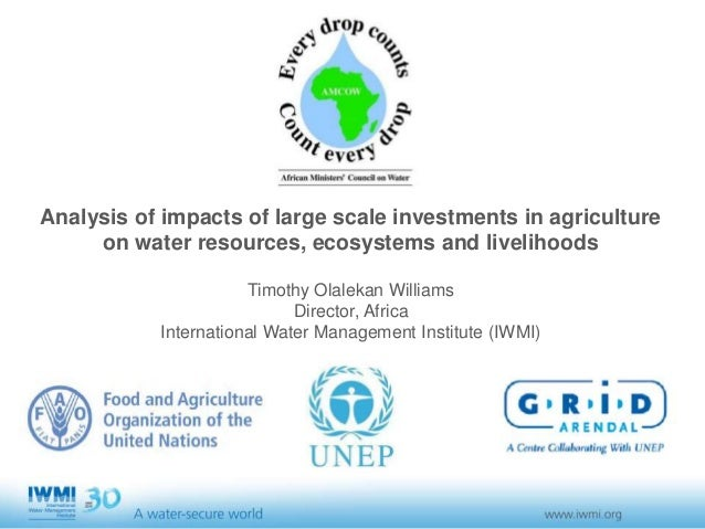Analysis of impacts of large scale investments in agriculture on water resources, ecosystems and livelihoods Timothy Olale...