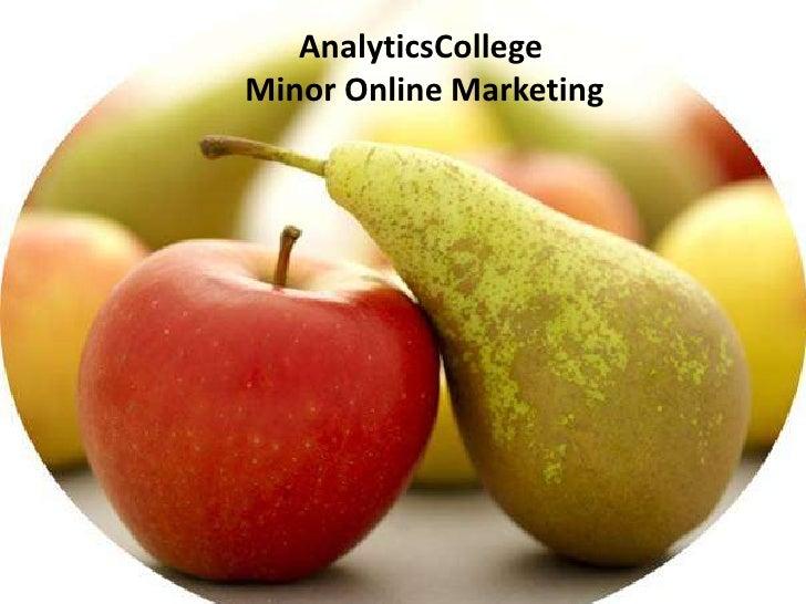 AnalyticsCollegeMinor Online Marketing