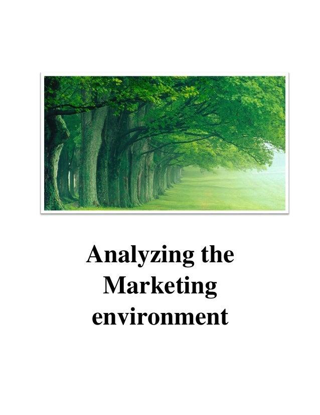 04 analyzing the marketing environment