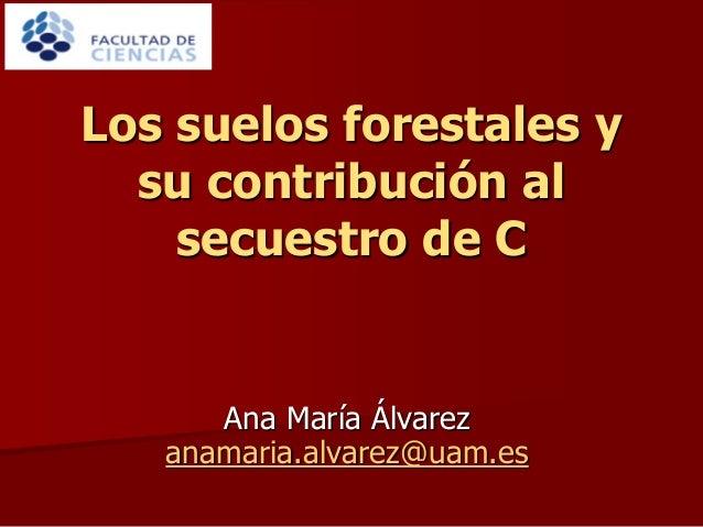 Ana María Álvarez anamaria.alvarez@uam.es Los suelos forestales y su contribución al secuestro de C