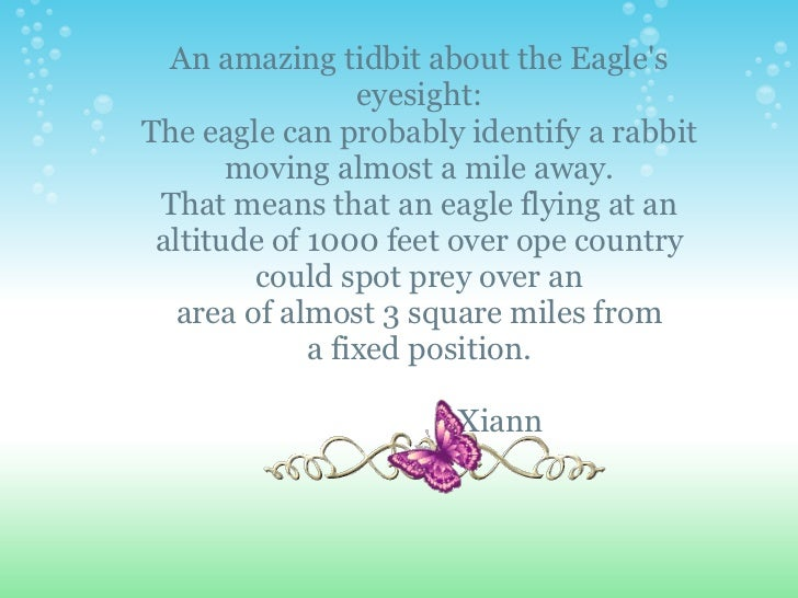 An amazing tidbit about the Eagles                 eyesight:The eagle can probably identify a rabbit       moving almost a...