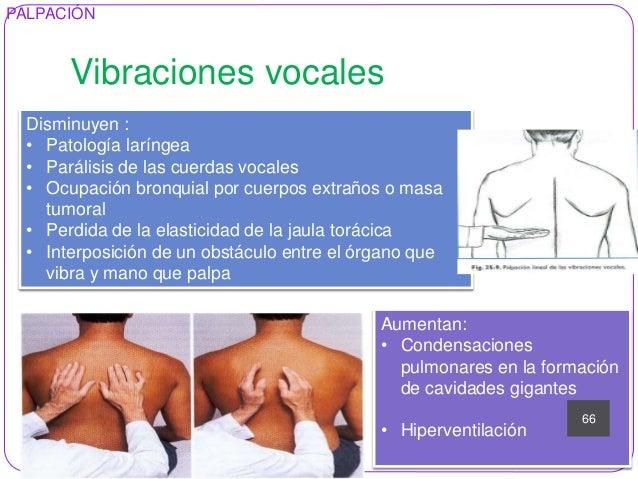 Anamnesis respiratorio