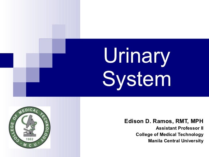 Urinary System Edison D. Ramos, RMT, MPH Assistant Professor II College of Medical Technology Manila Central University