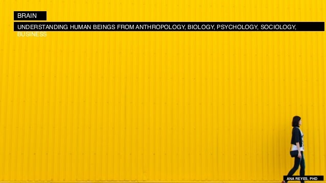 BRAIN UNDERSTANDING HUMAN BEINGS FROM ANTHROPOLOGY, BIOLOGY, PSYCHOLOGY, SOCIOLOGY, BUSINESS ANA REYES, PHD