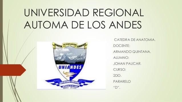 UNIVERSIDAD REGIONAL AUTOMA DE LOS ANDES CATEDRA DE ANATOMIA. DOCENTE: ARMANDO QUINTANA. ALUMNO: JOHAN PAUCAR. CURSO: 2DO....
