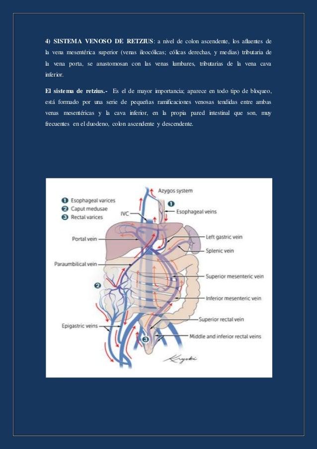 Anastomosis portosistemicas maribel