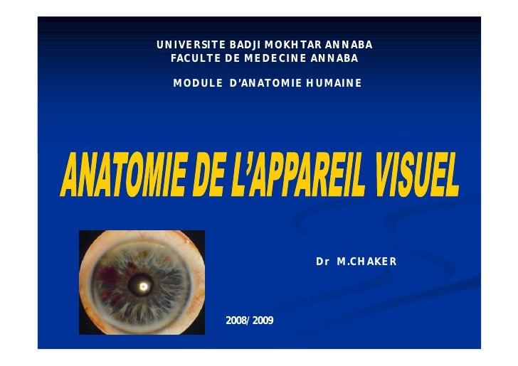 UNIVERSITE BADJI MOKHTAR ANNABA   FACULTE DE MEDECINE ANNABA    MODULE D'ANATOMIE HUMAINE                           Dr M.C...