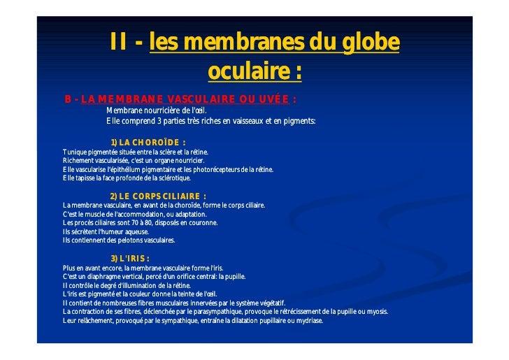 A n a t o e i l 2009 - Couche du globe oculaire ...