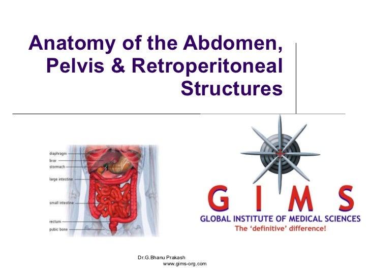 Anatomy of the Abdomen, Pelvis & Retroperitoneal Structures Dr.G.Bhanu Prakash  www.gims-org.com