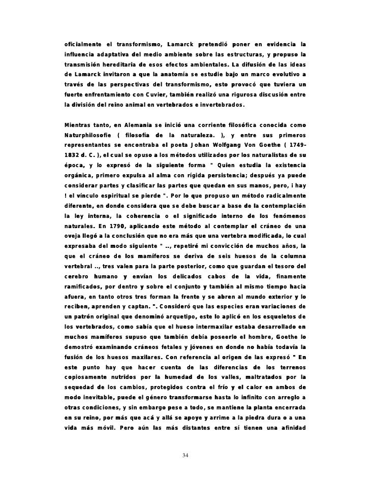 Encantador La Anatomía De La Influencia Inspiración - Imágenes de ...